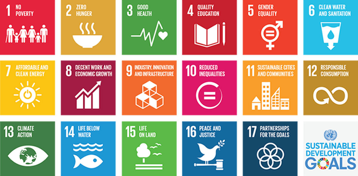 How Companies Can Champion Sustainable Development Goals