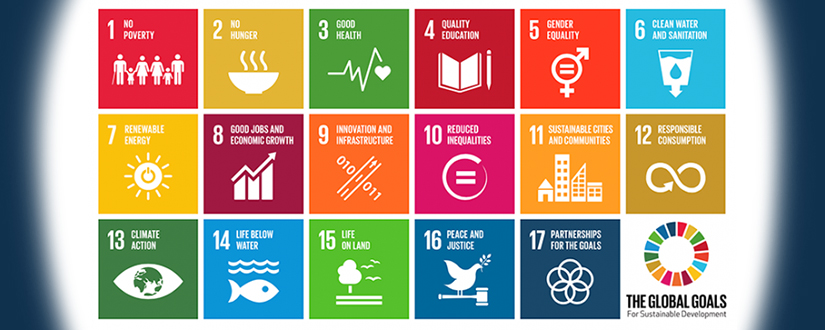 CSR Europe's SDGs Masterclass : Linking SDGs  to Business Strategy